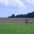 Radweg in Mittelfranken2 中部フランケンの自転車道2